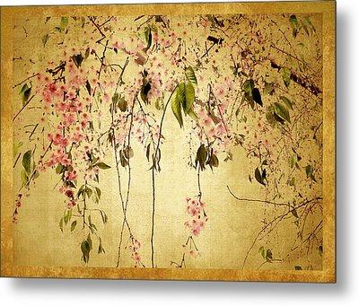 Cherry Blossom Metal Print by Jessica Jenney