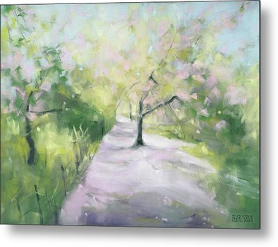 Cherry Blossom Tree Central Park Bridle Path Metal Print by Beverly Brown