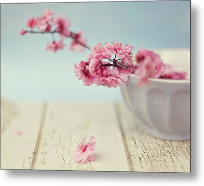 Cherry Blossoms In Bowl Metal Print by Hayley Johnson Photography