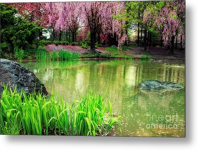Rain Of Pink Cherry Blossoms Metal Print by Charline Xia