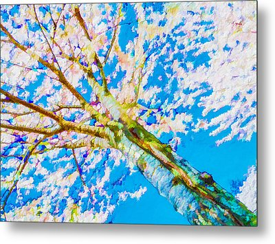Cherry Blossoms Over Blue Sky Metal Print by Lanjee Chee