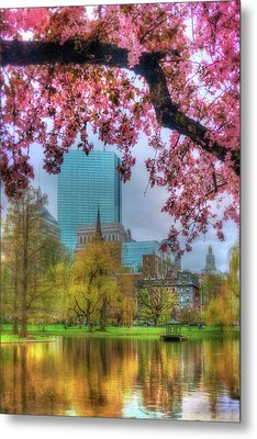 Cherry Blossoms Over Boston Metal Print by Joann Vitali
