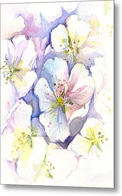 Cherry Blossoms Watercolor Metal Print