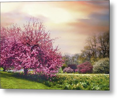 Metal Print featuring the photograph Cherry Orchard Hill by Jessica Jenney