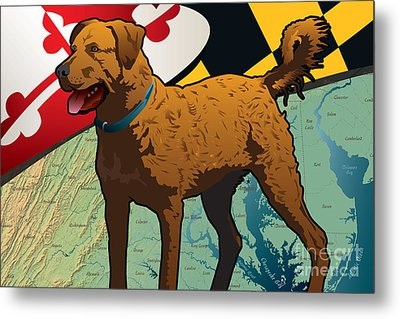 Chesapeake Bay Retriever Of Maryland  Metal Print