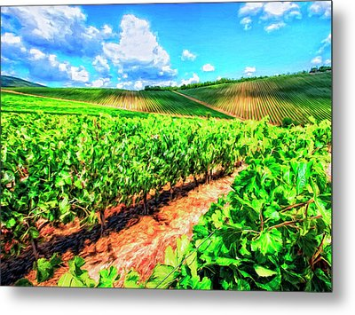 Chianti Vineyard In Tuscany Metal Print
