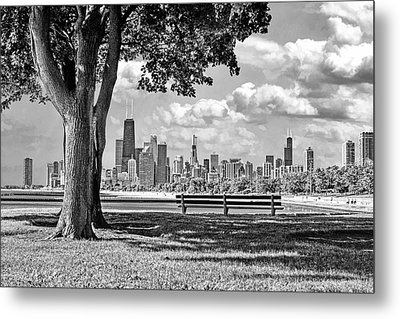 Metal Print featuring the photograph Chicago North Skyline Park Black And White by Christopher Arndt