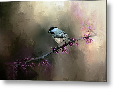 Chickadee In The Light Metal Print