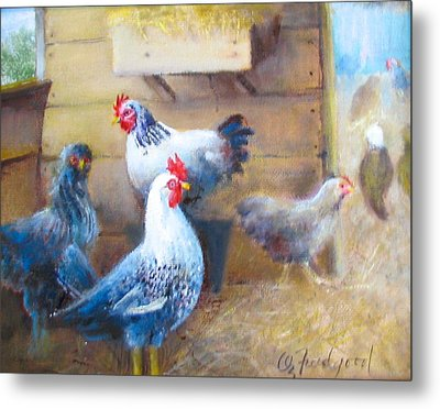 Chickens All Cooped Up Metal Print by Oz Freedgood
