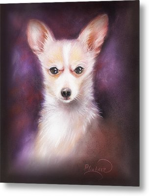 Metal Print featuring the drawing Chihuahua No. 1 by Patricia Lintner