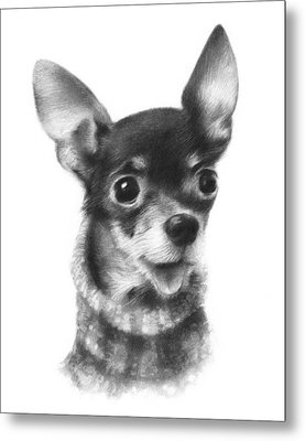 Metal Print featuring the drawing Chihuahua Pup by Natasha Denger