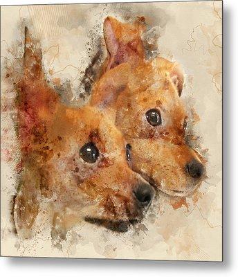 Chihuahua Twins - Digital Watercolor Dog Portrait Metal Print