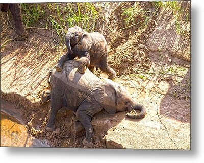 Childsplay On The Riverbank Metal Print