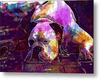 Chill Out Dog Boxer Relax Lazy  Metal Print