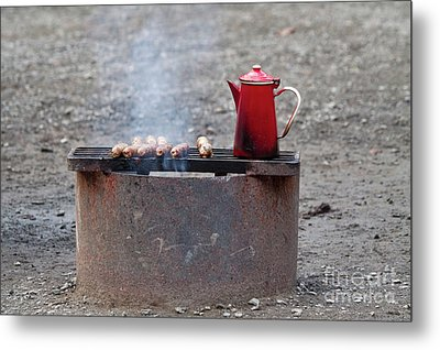 Chilly Morning Metal Print by Louise Heusinkveld