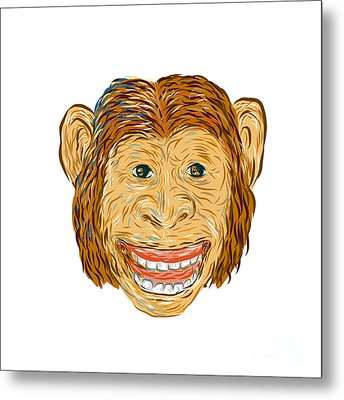 Chimpanzee Head Front Isolated Metal Print