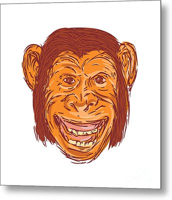 Chimpanzee Head Front Isolated Drawing Metal Print