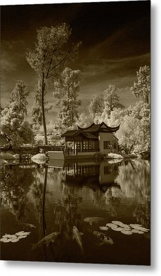 Metal Print featuring the photograph Chinese Botanical Garden In California With Koi Fish In Sepia Tone by Randall Nyhof