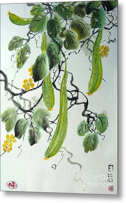 Chinese Cucumber Metal Print by Birgit Moldenhauer