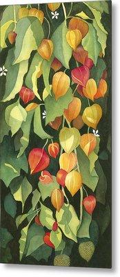 Chinese Lanterns Metal Print by Anne Havard