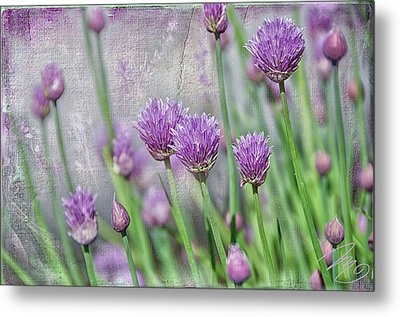 Chives In Texture Metal Print