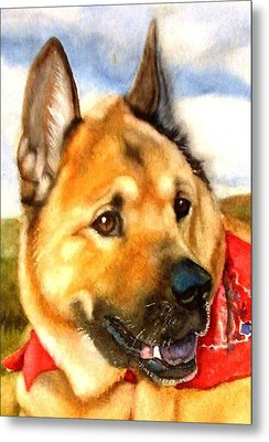 Metal Print featuring the painting Chow Shepherd Mix by Marilyn Jacobson