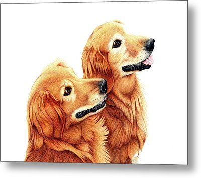 Chris And Riggs Metal Print by Danielle R T Haney