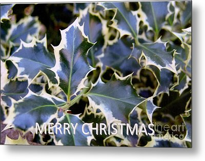 Christmas Card 2 - 2011 Metal Print by Rod Ismay