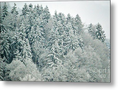 Metal Print featuring the photograph Christmas Forest - Winter In Switzerland by Susanne Van Hulst