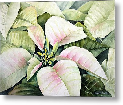 Christmas Poinsettias Metal Print by Bobbi Price