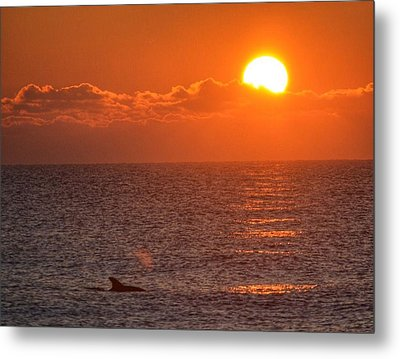 Christmas Sunrise On The Atlantic Ocean Metal Print