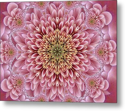 Chrysanthemum Beauty Metal Print