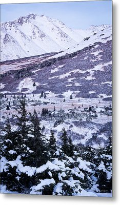 Chugach In Alpenglow Metal Print