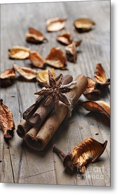 Cinnamon Metal Print by Jelena Jovanovic