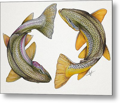 Circling Rainbow And Brown Trout Metal Print by Nick Laferriere