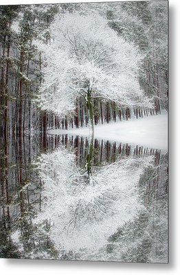 City Flare Winter Reflection Metal Print by Aimee L Maher Photography and Art Visit ALMGallerydotcom