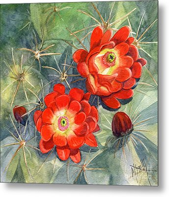 Claret Cup Cactus Metal Print by Marilyn Smith