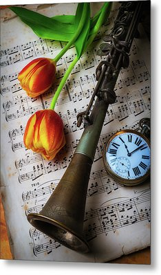 Clarinet And Tulips Metal Print by Garry Gay