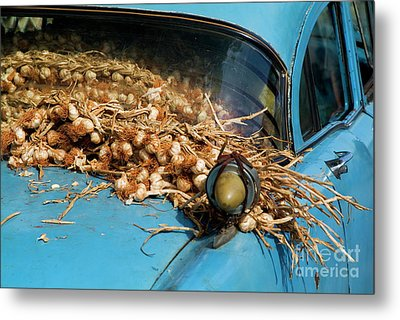 Classic American Car With Trailer Full Of Garlic Metal Print by Sami Sarkis