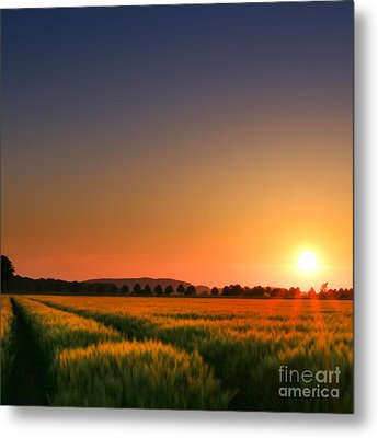 Metal Print featuring the photograph Clear Sunset by Franziskus Pfleghart