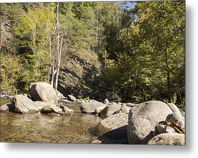 Clear Water Stream Metal Print