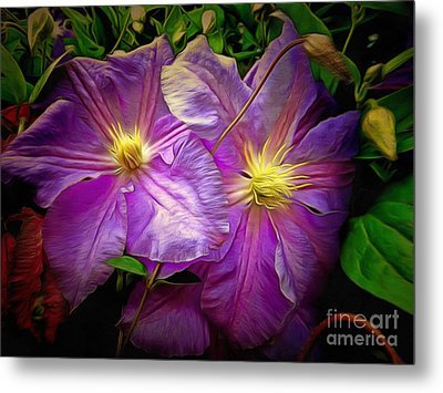 Clematis Azure Pearl Metal Print by Dorothy Berry-Lound
