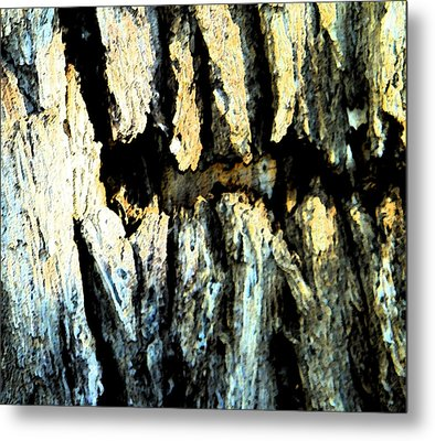 Metal Print featuring the photograph Cliff Dwellings by Lenore Senior