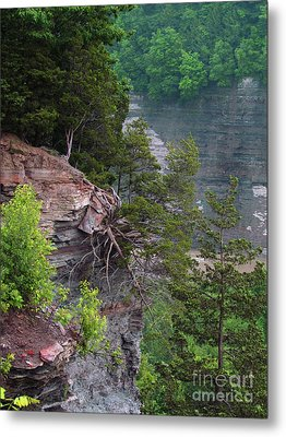 Cliff Hanger Metal Print by Deborah Johnson