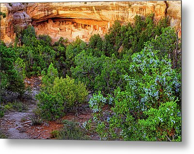 Metal Print featuring the photograph Cliff Palace At Mesa Verde National Park - Colorado by Jason Politte
