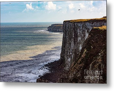 Metal Print featuring the photograph Cliffs Of Bempton by Anthony Baatz