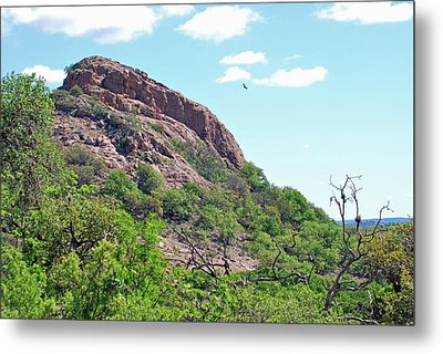 Metal Print featuring the photograph Climbing Rock by Teresa Blanton
