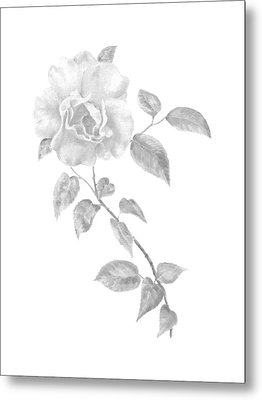 Metal Print featuring the painting Climbing Rose II by Elizabeth Lock