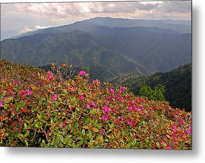 Clingman's Dome From Cliff Top Metal Print by Alan Lenk