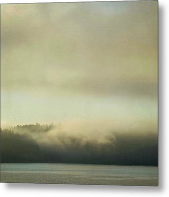 Metal Print featuring the photograph Cloaked by Sally Banfill